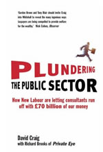 Plundering-the-public-sector